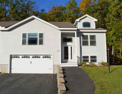 Derry Single Family Home For Sale: 11 Indian Hill Road #R