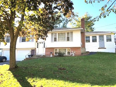 Nashua Single Family Home For Sale: 14 Bradford Street