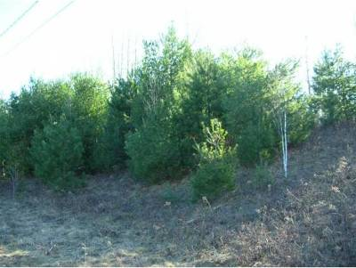 Bethlehem Residential Lots & Land For Sale: Lot #4 Thorn Hill Road