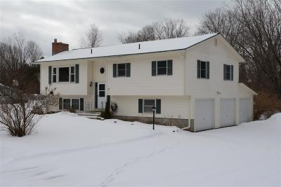 Jericho Single Family Home For Sale: 13 Willow Lane