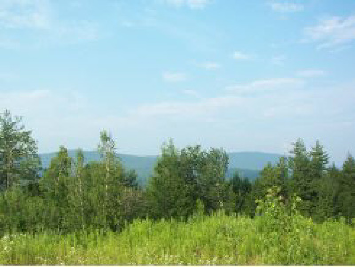 Chittenden County Residential Lots & Land For Sale: 70 Appletree Lane