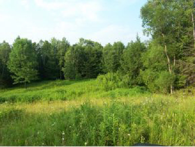 Chittenden County Residential Lots & Land For Sale: 20 Appletree Lane