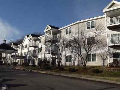 Manchester Condo/Townhouse For Sale: 245 Edward J Roy Drive #104