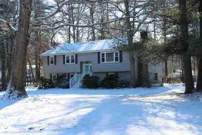 Londonderry Single Family Home Active Under Contract: 10 Tranquil Drive