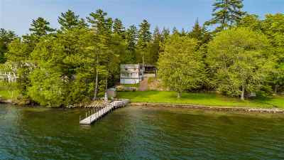 Moultonborough Single Family Home For Sale: 33 Grassy Pond Road