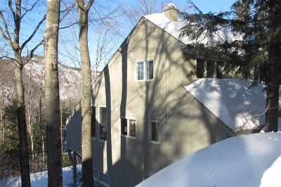 Carroll County Condo/Townhouse For Sale: 7 Cathedral Trail