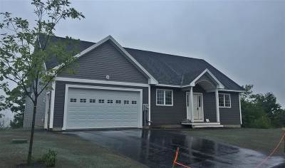 Strafford County Single Family Home For Sale: 43 Barbaro Drive
