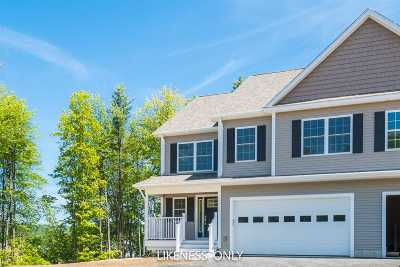 Jericho Single Family Home For Sale: 26 B Black Walnut Lane