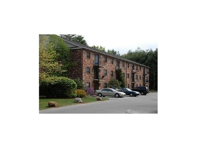 Laconia Rental For Rent: 150 Blueberry Lane #11