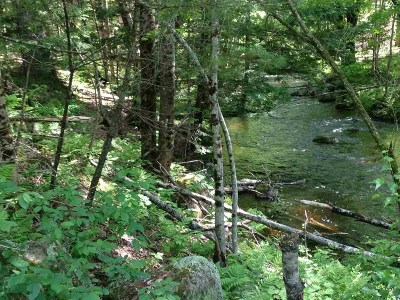 Carroll County Residential Lots & Land For Sale: Granite Road #101