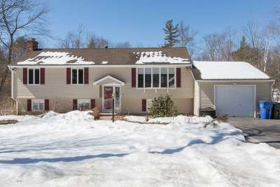 Londonderry Single Family Home For Sale: 12 Ashley Drive