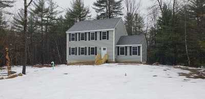 Merrimack County Single Family Home For Sale: 64 Chestnut Drive