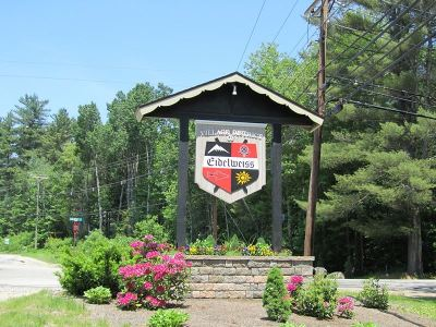 Carroll County Residential Lots & Land For Sale: Lot 41 Huttwil Drive #41
