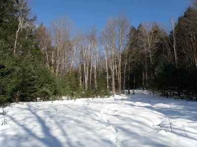 Newbury Residential Lots & Land For Sale: Wrights Mountain Rd.