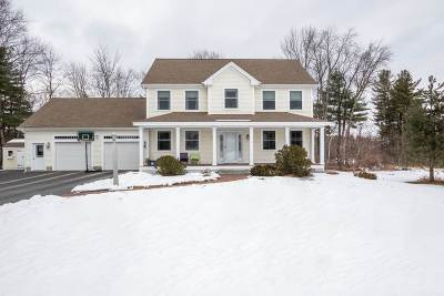 Merrimack County Single Family Home For Sale: 16 Gio Court