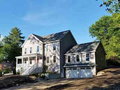 Nashua Single Family Home For Sale: 8 Kipling Street