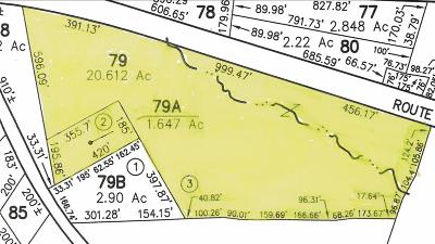 Belknap County Residential Lots & Land For Sale: Nh Route 104 #79 &