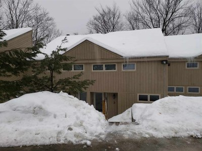 Condo/Townhouse Active Under Contract: Unit 3 5 Pemigewasset Drive #3