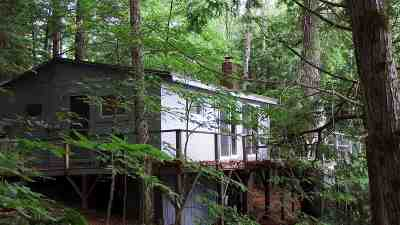 Moultonborough Single Family Home For Sale: 71 Buoniello Road