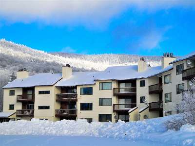 Chittenden County Condo/Townhouse Active Under Contract: 27 Nature Trail #302