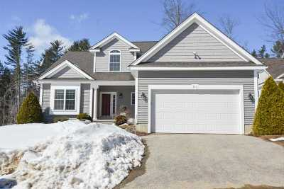 Laconia Single Family Home For Sale: 125 Hickory Stick Lane