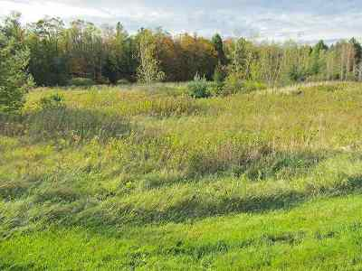 Richford Residential Lots & Land For Sale: 14 Memorial
