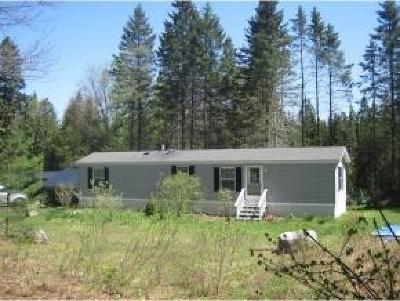 Woodbury Single Family Home For Sale: 1563 Nichols Pond Road