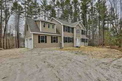 Merrimack Single Family Home For Sale: 290 Baboosic Lake Road