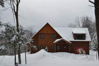 Orleans County Single Family Home For Sale: 373 Wilderness Road #TH35