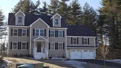 Nashua Single Family Home For Sale: 21 Schwinn Drive #97