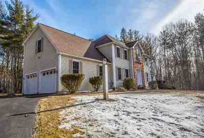Amherst Single Family Home For Sale: 14 Sargent Quarry Road