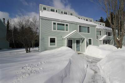 Waterville Valley Condo/Townhouse For Sale: 16 Avalanche Way #17