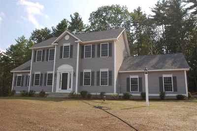 Hudson Single Family Home For Sale: 12 Laurel Landing
