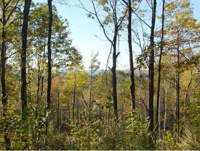 Henniker Residential Lots & Land Active Under Contract: 218 Mount Hunger Road Road