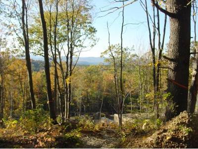 Henniker Residential Lots & Land Active Under Contract: 294 Mount Hunger Road