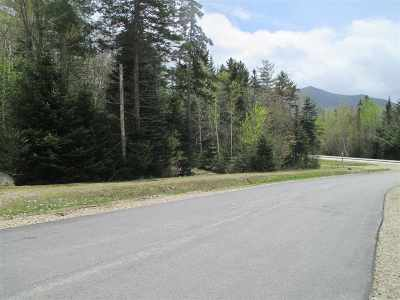 Waterville Valley Residential Lots & Land For Sale: 4 Golden Heights Road #29
