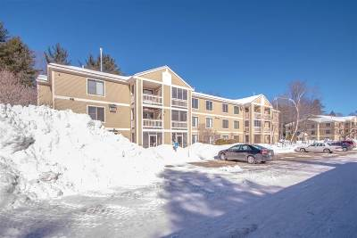 Conway Condo/Townhouse For Sale: 19 Saco Street #59