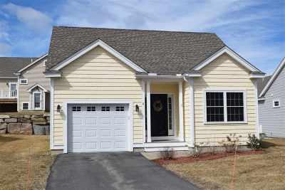 Merrimack Condo/Townhouse For Sale: 6 Dunstable Circle #94