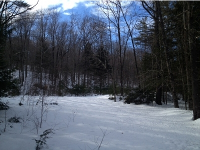Sanbornton Residential Lots & Land For Sale: Lot 3 Stage Road