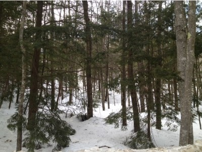 Sanbornton Residential Lots & Land For Sale: Lot 2 Stage Road