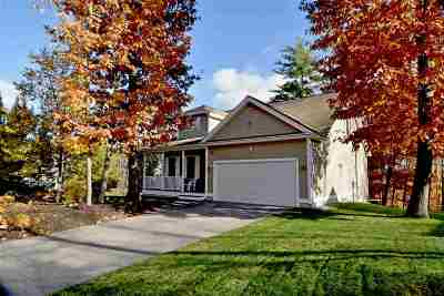 Belknap County Single Family Home For Sale: 98 Natures View Drive
