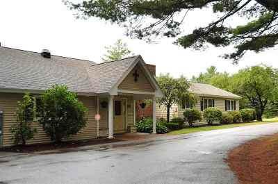 Merrimack County Single Family Home For Sale: 319 Lake Shore Drive