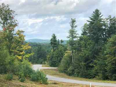 Weare Residential Lots & Land For Sale: Lot 27 Ski Tow Road