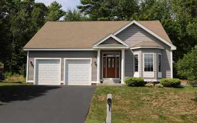 Laconia Single Family Home For Sale: 93 Natures View Drive