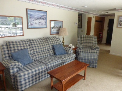Cambridge Condo/Townhouse For Sale: Riverside 51 At Smugglers' Notch Resort