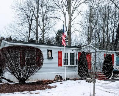 Strafford County Mobile/Manufactured For Sale: 446 Emerald Drive