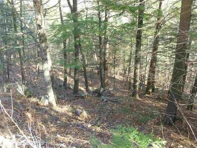 Strafford County Residential Lots & Land For Sale: Lot 217-002 Pine Point Road #1