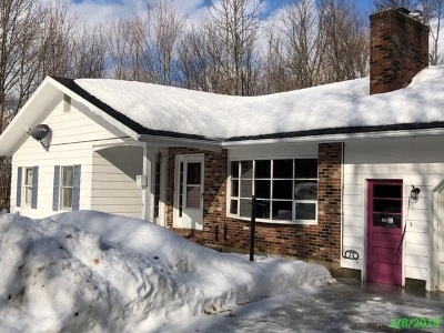 Orleans County Single Family Home For Sale: 59 Louis Street