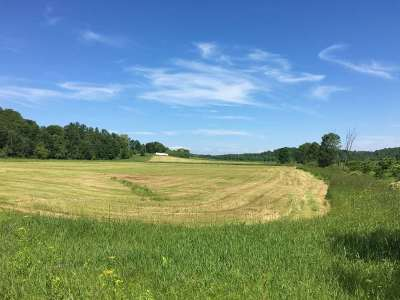 Hinesburg Residential Lots & Land For Sale: Leavensworth Road