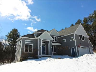 Colchester Single Family Home For Sale: 296 Colden Road